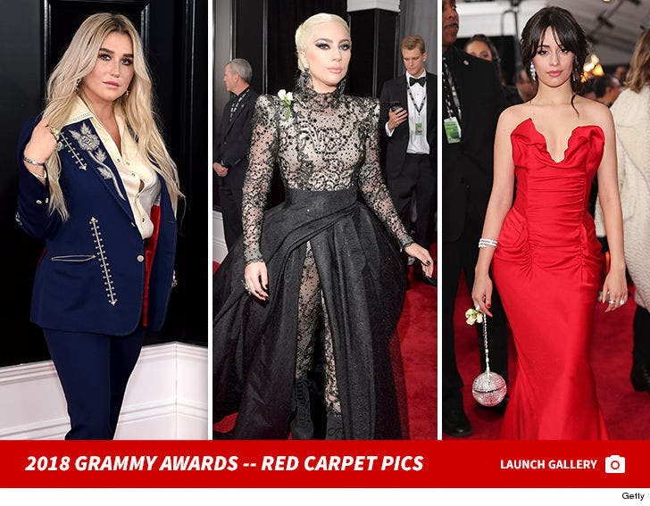 2018 Grammy Awards -- Red Carpet Pics