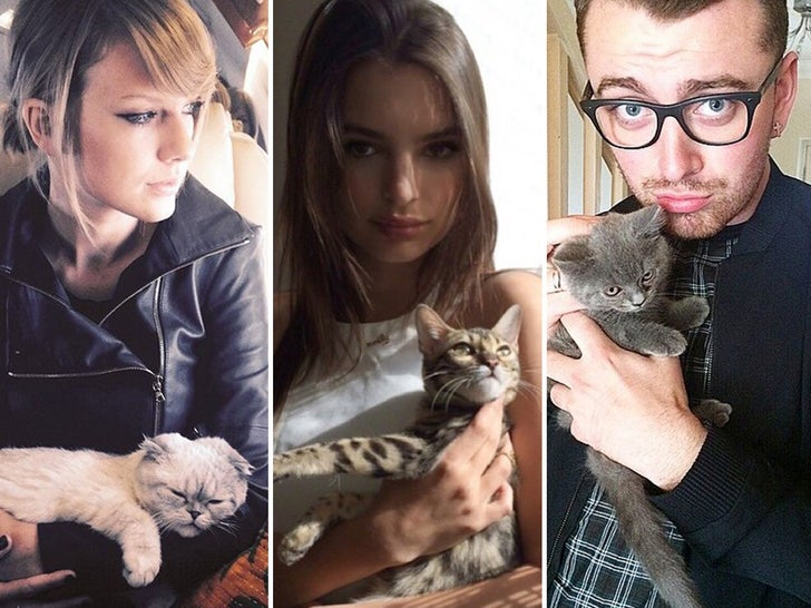 Celebrities and Their Feline Friends