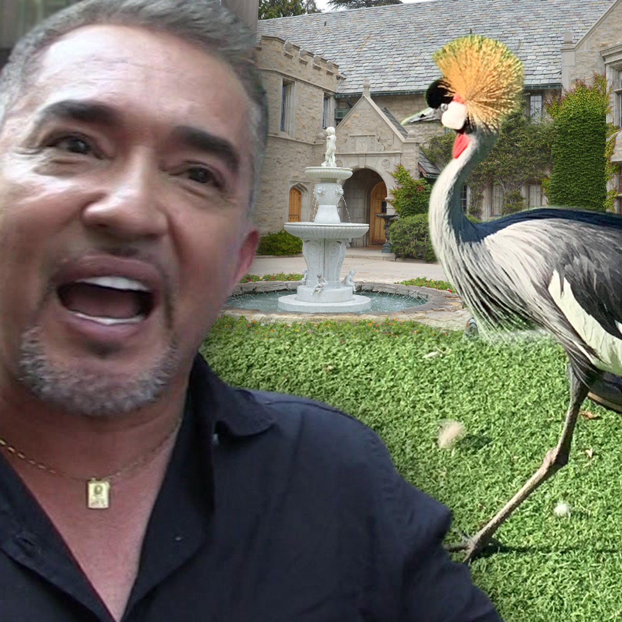 Cesar Millan Called in to Train Pissy African Crane Living at Playboy Mansion