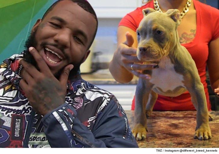 The Game Scores Puppy Bro to Fetty Wap's Bitch