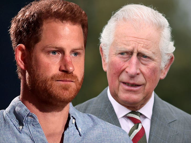 Royal Aides Reportedly Say Prince Harry Should Be Stripped of Title.jpg