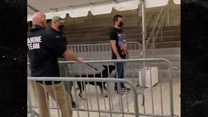 COVID-Sniffing Dogs Screen Fans at Miami Heat Game