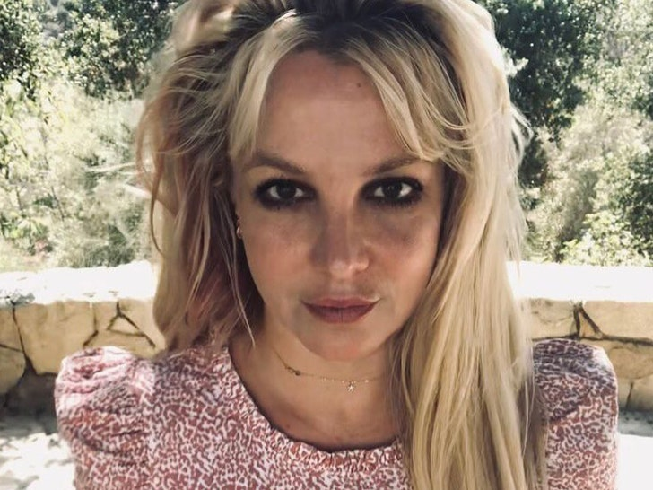 Britney Spears' Lawyer Rails on Jamie, Calls Him 'Alcoholic and Gambling Addict'.jpg