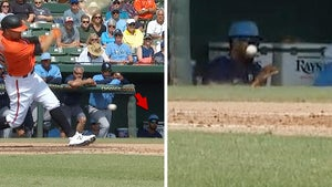 Tampa Bay Rays Prospect Suffered Facial Fractures After Foul Ball Hit Him