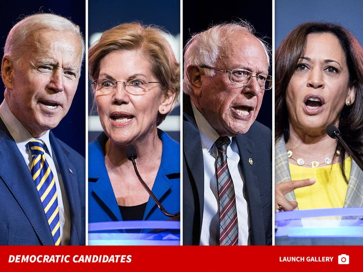 Democratic Party Candidates