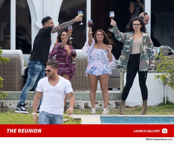 Jersey Shore Miami Reunion