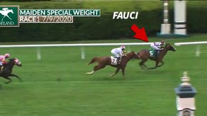 Racehorse Named 'Fauci' Gallops to Victory, COVID Be Damned!