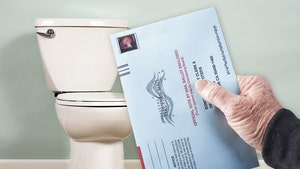 Michigan Election Official Rats Out Toilet Mail-In 'Ballot Box'