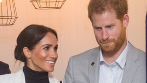 Prince Harry Now 'A Shadow of the Prince I Once Knew' Says Biographer