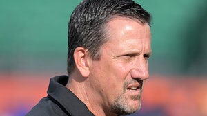 Greg Knapp Accident, Driver Who Struck NFL Coach Won't Be Charged