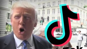 President Trump to Ban TikTok and WeChat from App Stores by Sunday