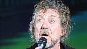 Led Zeppelin Front Man Robert Plant: Help! I'm Being Harassed By a Delusional Fan