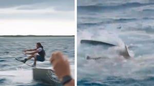 'Jackass' Joins 'Shark Week' Sneak Peek, Possible Shark Attack???
