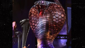 Taylor Swift Kicks Off Reputation Tour with Giant Snake