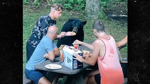 Family Feeds Wild Black Bear Peanut Butter and Jelly Sandwich