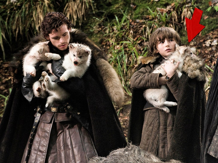 'Game of Thrones' direwolf dog dies of cancer