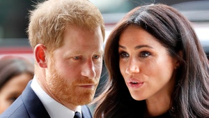 Prince Harry and Meghan Markle 'Shocked' About Losing Commonwealth Roles
