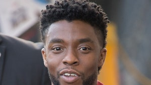 Chadwick Boseman's Hometown Already Working on Statue To Honor Him