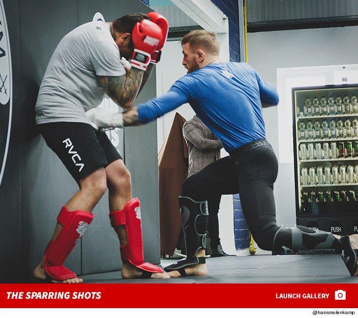 Conor McGregor Sparring With Hans Molenkamp