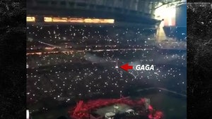 Lady Gaga's Super Bowl Halftime Show Jump Was the Perfect Illusion (VIDEO)