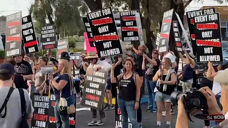 Foo Fighters Concert Flooded with Anti-Vaxxers Protesting Vax Requirement.jpg