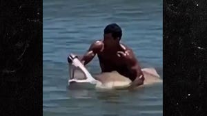 Swimmer Catches Shark Off Delaware Coast with Bare Hands