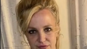 Britney Spears Will Not Be Charged Over Housekeeper's Battery Allegations