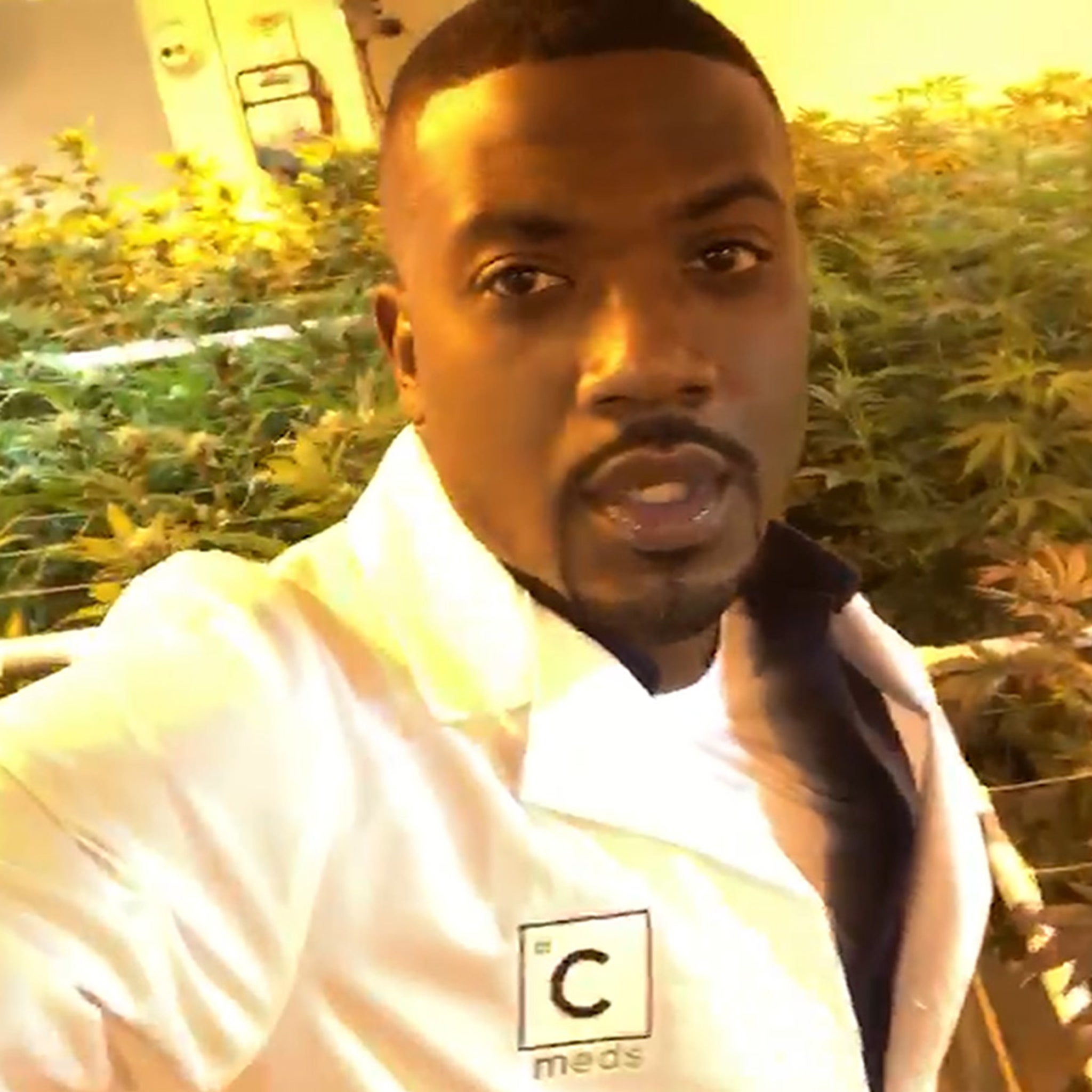 Image result for ray j and cannabis