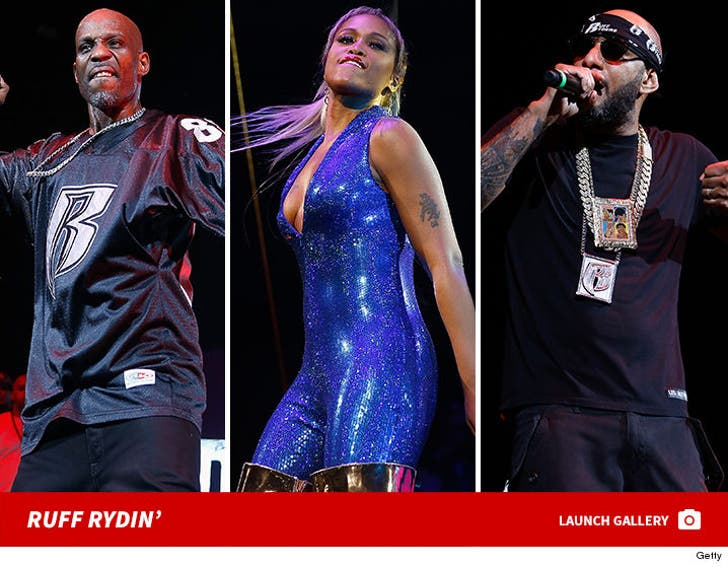 Ruff Ryders and Friends Reunion Tour
