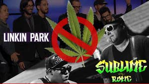 Sublime With Rome's Weed Confiscated -- Linkin Park Ratted Us Out to the Cops!