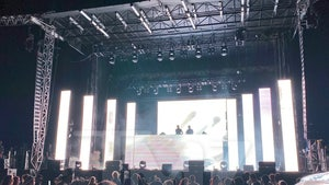Chainsmokers Concert Organizers Investigated, Defend COVID Precautions
