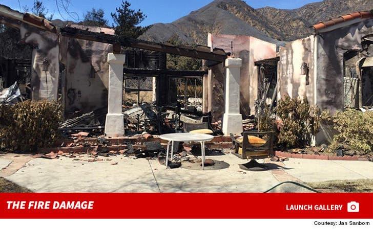 Loren Janes -- The Fire Damage
