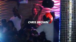 Chris Brown -- Graffiti Scofflaw