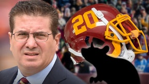 Dan Snyder Accuses Fired Assistant of Feeding Info to Site Behind Fake Stories
