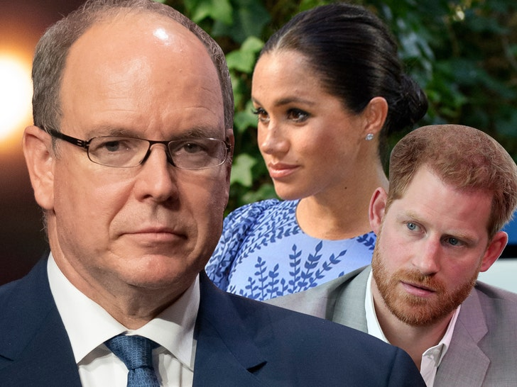 Prince Albert Calls Out Meghan Markle, Prince Harry for Oprah Interview.jpg