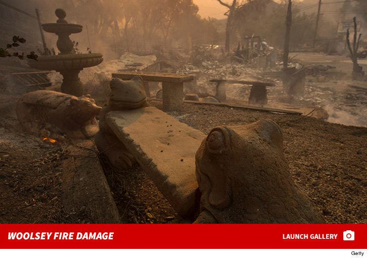 Woolsey Fire Damage