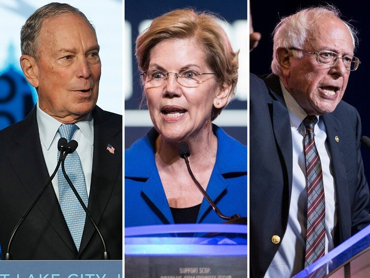 Democratic Party Candidates