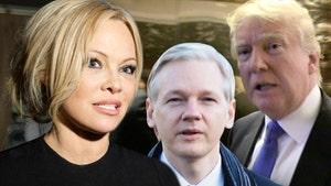 Pam Anderson Blasts Trump, Britain after Julian Assange's Arrest in UK
