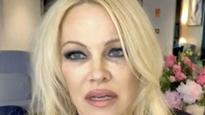 Julian Assange in Danger of Assassination, Pamela Anderson Fears