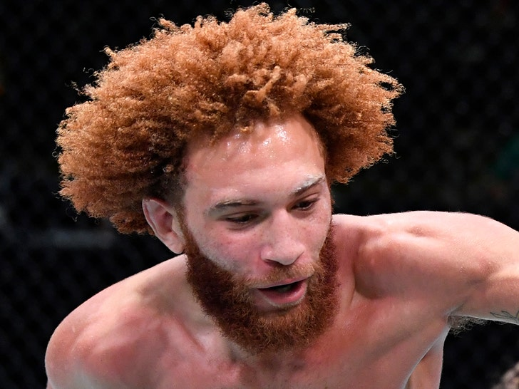 UFC Cuts Luis Pena Following Domestic Violence Arrest.jpg