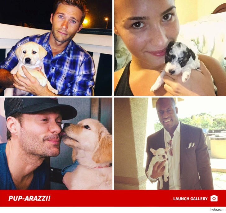 Stars Posin' With Puppies