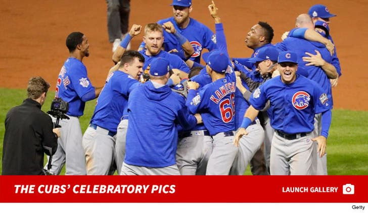 The Cubs Win The Pennant!