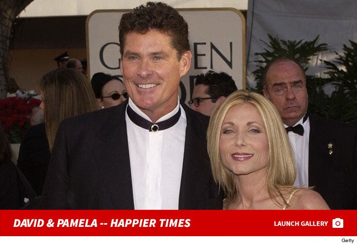 David Hasselhoff and Pamela Bach -- Happier Times