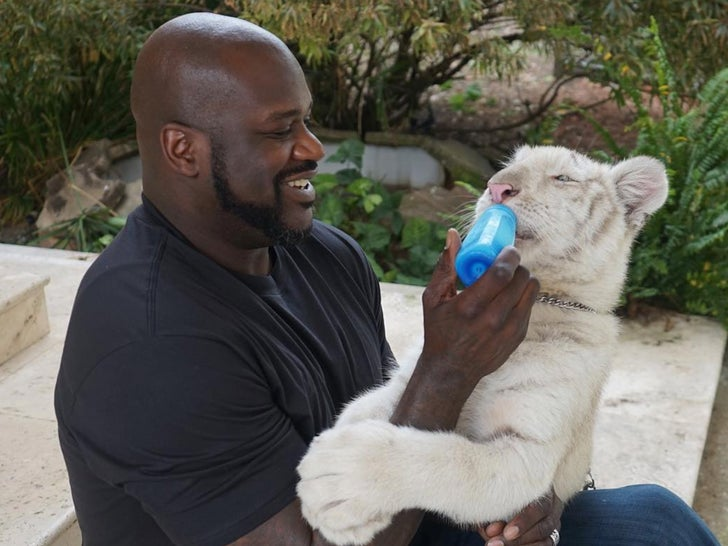 Shaquille O'Neal's Animal Photos