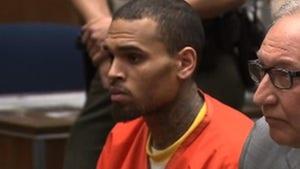 Chris Brown -- Jail Stinks, and So Do I