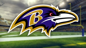 Baltimore Ravens Donating $1 Million To Fight Social Injustice