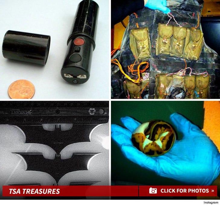 TSA's Craziest Confiscated Treasures