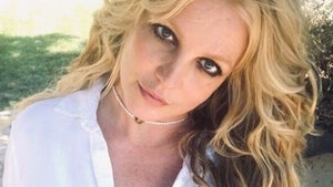 Britney Spears Retires from Music, Manager Larry Rudolph Says in Resignation