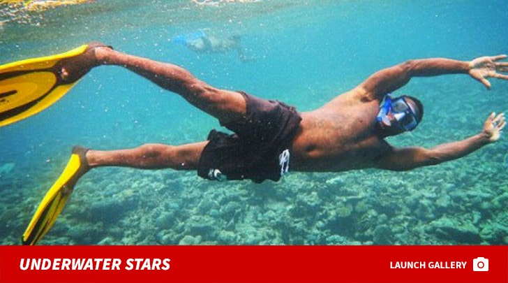 Scuba Diving Stars -- Seas the Day!
