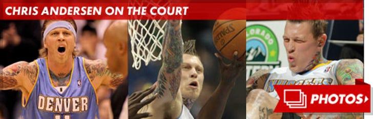 Chris Andersen on the Court